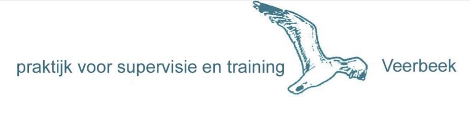 Praktijk voor supervisie en traning Veerbeek Logo